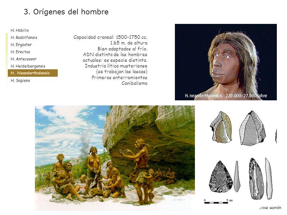 José Ramón Capacidad craneal: 1500-1750 cc. 1,65 m. de altura Bien adaptados al frío. ADN distinto de los hombres actuales: es especie distinta. Indus