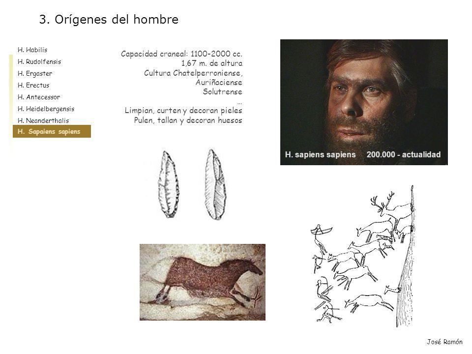 José Ramón Capacidad craneal: 1100-2000 cc. 1,67 m. de altura Cultura Chatelperroniense, Auriñaciense Solutrense … Limpian, curten y decoran pieles Pu