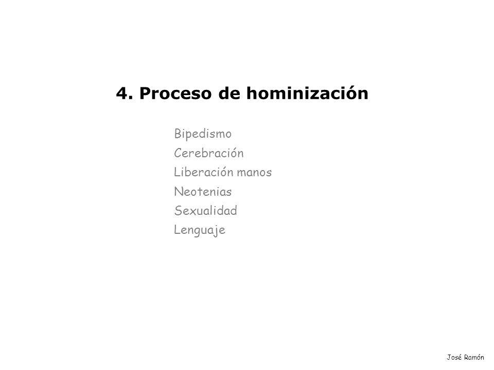 José Ramón 4. Proceso de hominización Bipedismo Cerebración Liberación manos Neotenias Sexualidad Lenguaje