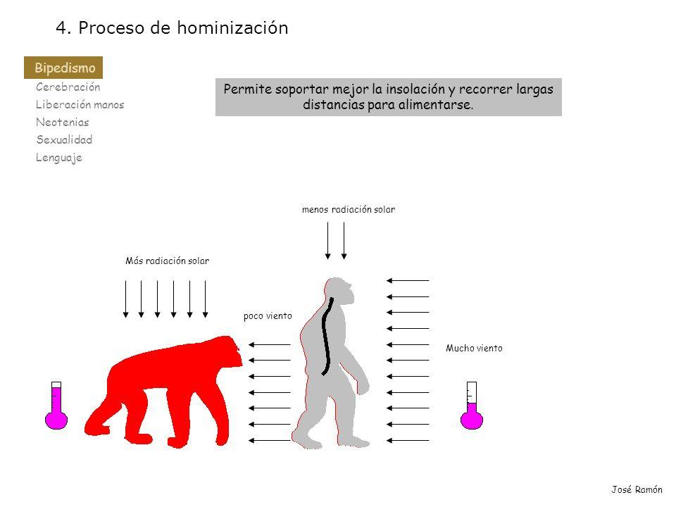 Bipedismo Cerebración Liberación manos Neotenias Sexualidad Lenguaje 4. Proceso de hominización Bipedismo José Ramón Permite soportar mejor la insolac