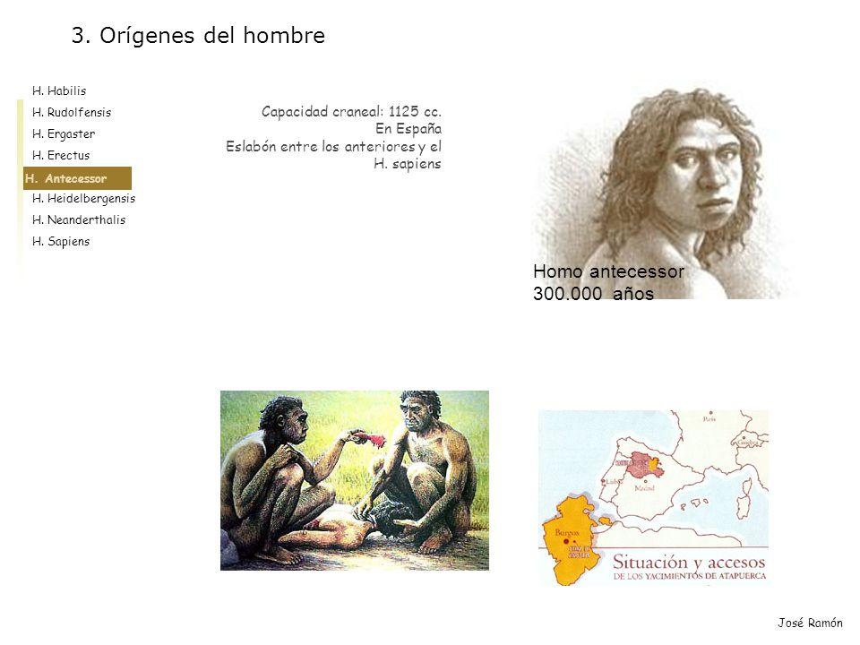 H. Habilis H. Rudolfensis H. Ergaster H. Erectus H. Antecessor H. Heidelbergensis H. Neanderthalis H. Sapiens José Ramón H. Antecessor Capacidad crane