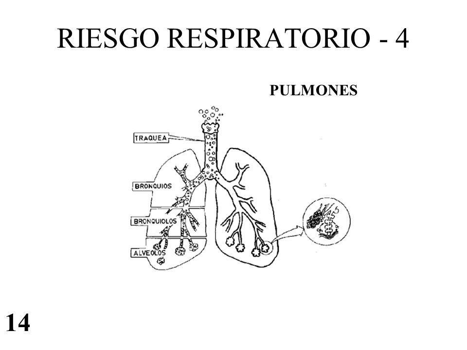 RIESGO RESPIRATORIO - 4 14 PULMONES