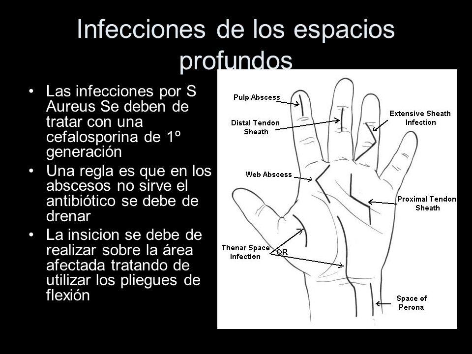 Infecciones de los espacios profundos Las infecciones por S Aureus Se deben de tratar con una cefalosporina de 1º generación Una regla es que en los a
