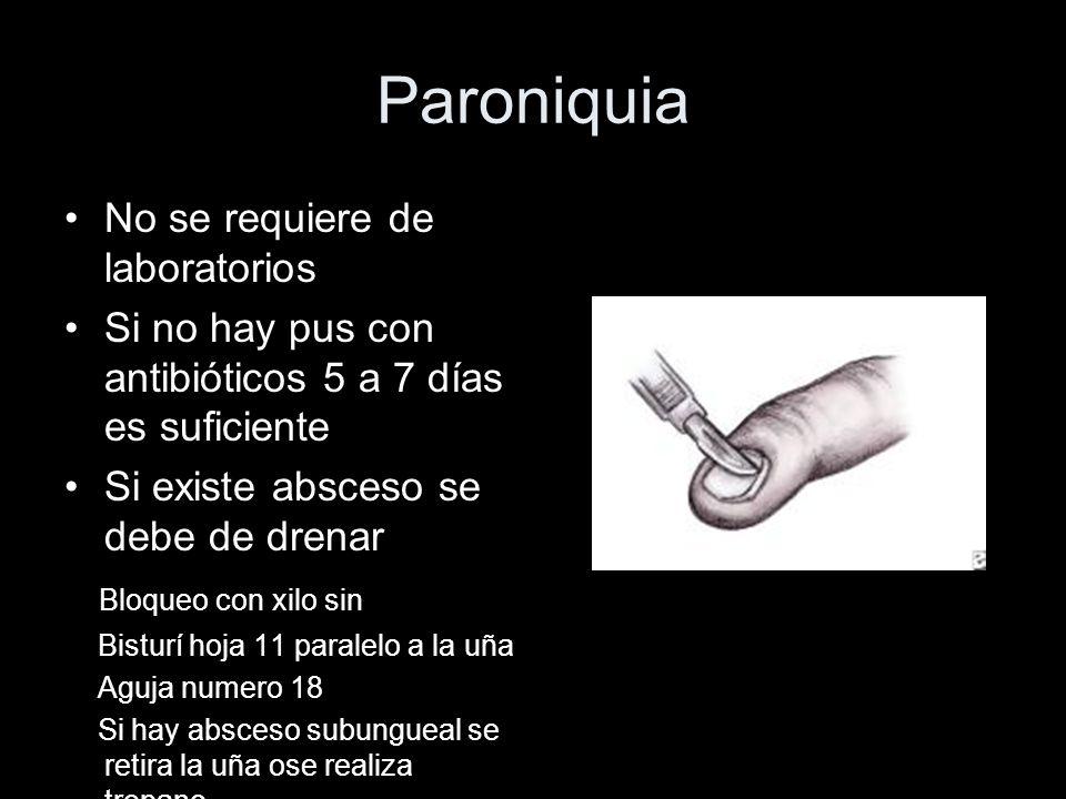 Paroniquia No se requiere de laboratorios Si no hay pus con antibióticos 5 a 7 días es suficiente Si existe absceso se debe de drenar Bloqueo con xilo