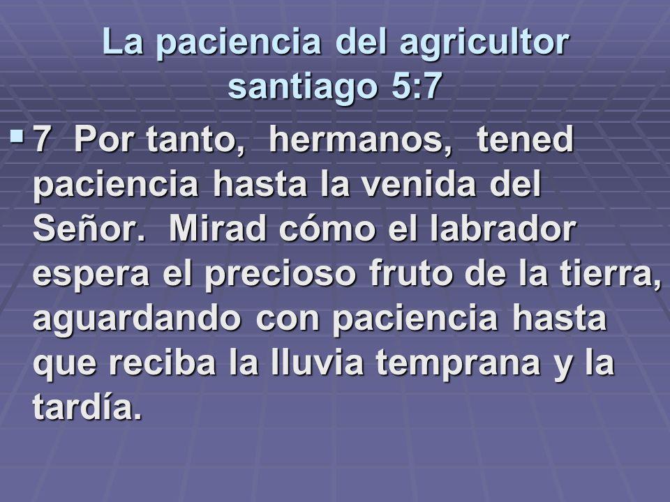 La paciencia del agricultor santiago 5:7 7 Por tanto, hermanos, tened paciencia hasta la venida del Señor. Mirad cómo el labrador espera el precioso f