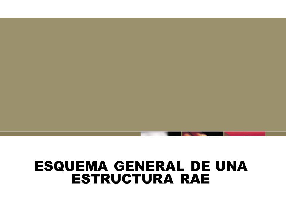 ESQUEMA GENERAL DE UNA ESTRUCTURA RAE