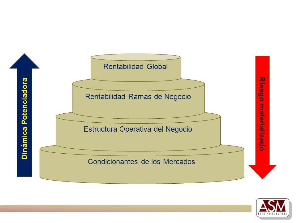 Condicionantes de los Mercados Estructura Operativa del Negocio Rentabilidad Ramas de Negocio Rentabilidad Global Dinámica Potenciadora Riesgo materia