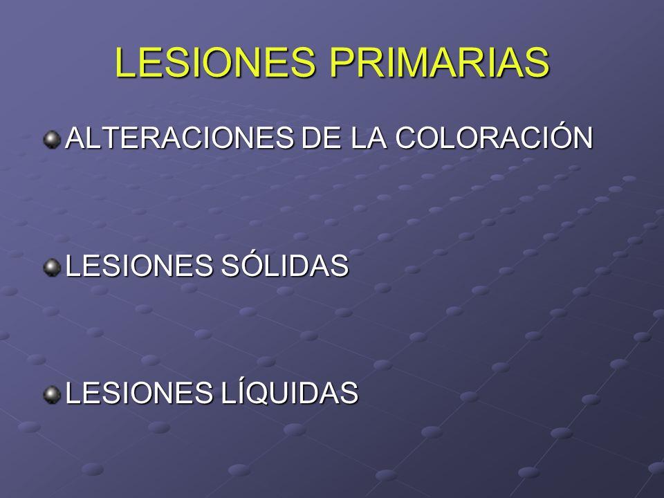 LESIONES PRIMARIAS ALTERACIONES DE LA COLORACIÓN LESIONES SÓLIDAS LESIONES LÍQUIDAS