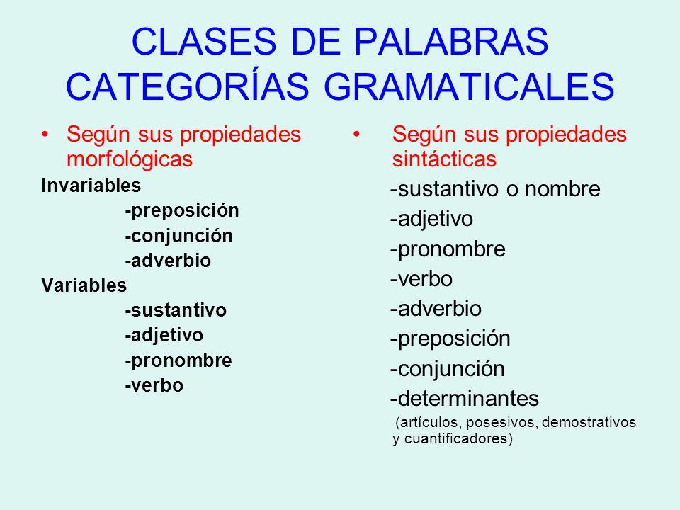 CLASES DE PALABRAS CATEGORÍAS GRAMATICALES Según sus propiedades morfológicas Invariables -preposición -conjunción -adverbio Variables -sustantivo -ad