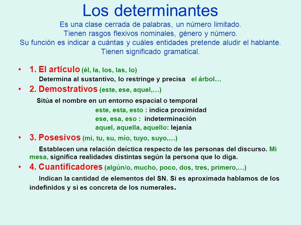 Los determinantes Es una clase cerrada de palabras, un número limitado. Tienen rasgos flexivos nominales, género y número. Su función es indicar a cuá