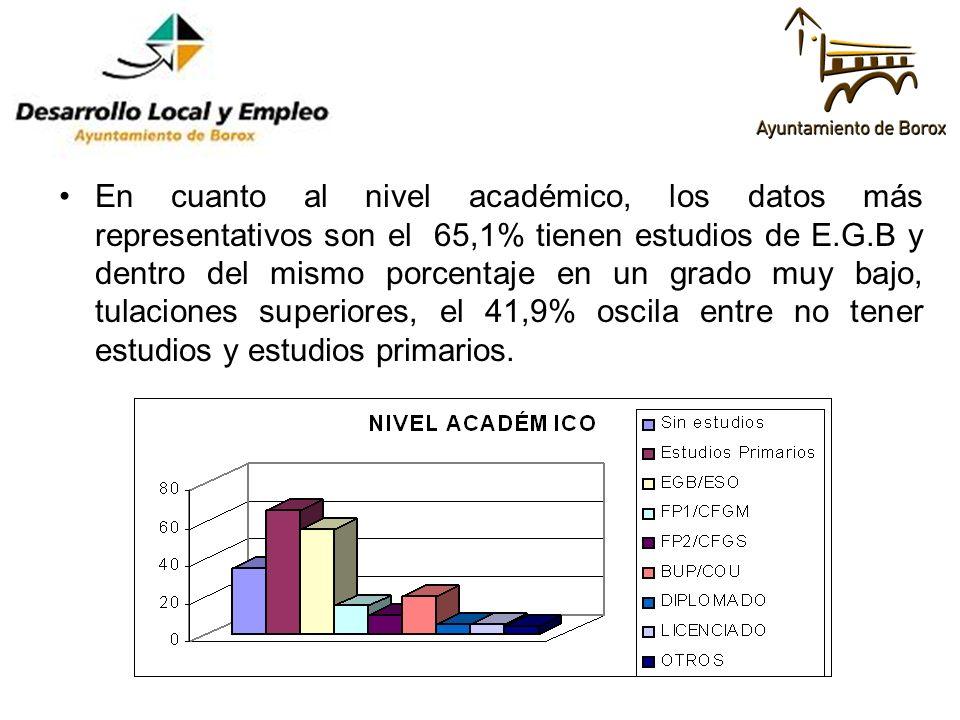 En cuanto al nivel académico, los datos más representativos son el 65,1% tienen estudios de E.G.B y dentro del mismo porcentaje en un grado muy bajo,