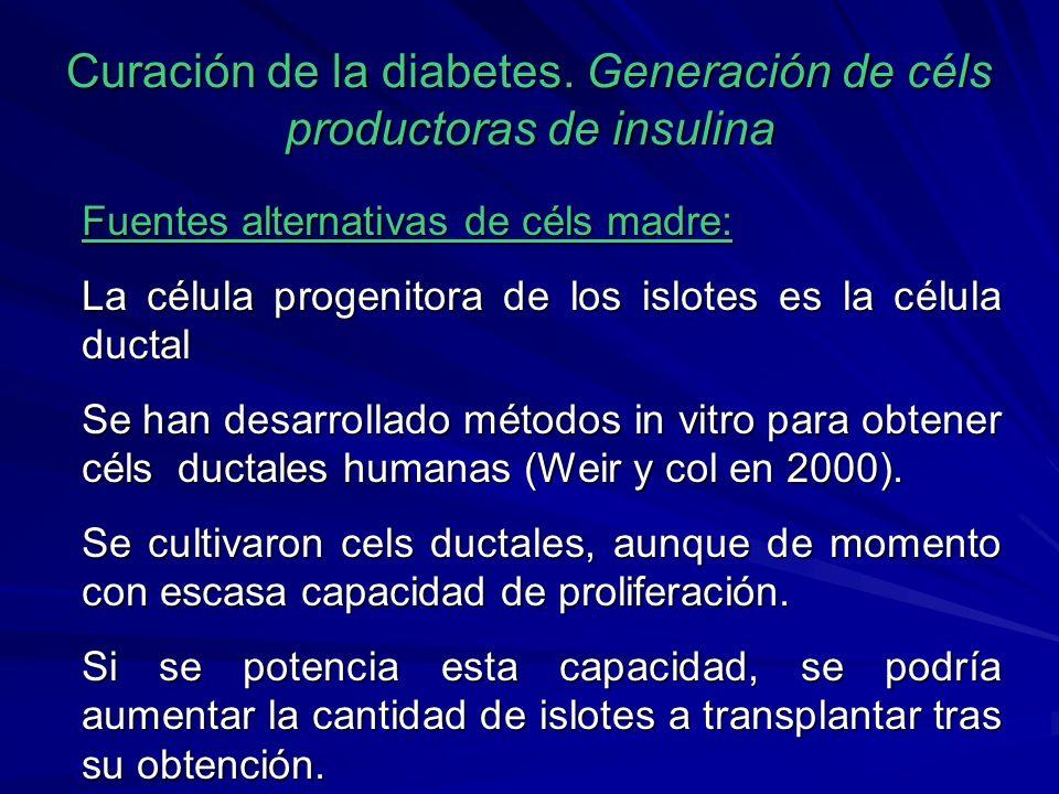 Curación de la diabetes. Generación de céls productoras de insulina Fuentes alternativas de céls madre: La célula progenitora de los islotes es la cél