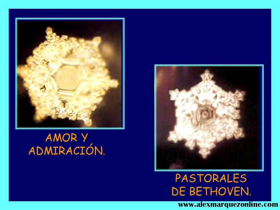 Molécula de agua expuesta al SONIDO DE LA VOZ DE ADOLPH HITLER. Molécula de agua expuesta al sonido de UNA AMENAZA DE MUERTE. www.alexmarquezonline.co