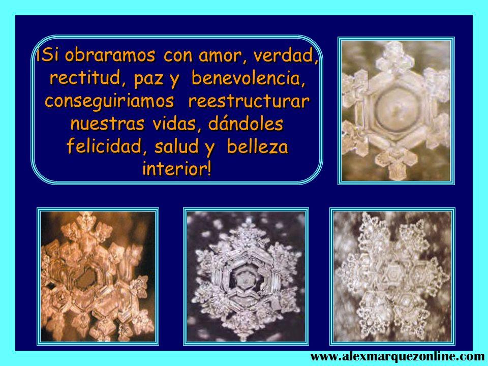 ¿Cuál es la molécula que queremos dentro de nosotros? ¿La molécula de los buenos sentimientos, o la de los sentimientos malos? www.alexmarquezonline.c