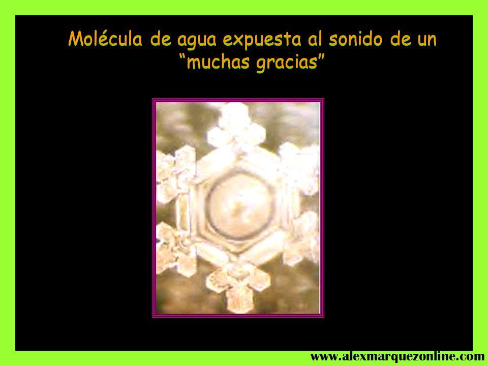Molécula de agua expuesta a la energía del sonido del Aria para cuerda en Sol, de Bach La misma molécula de agua expuesta al sonido de un ROCK HEAVY M