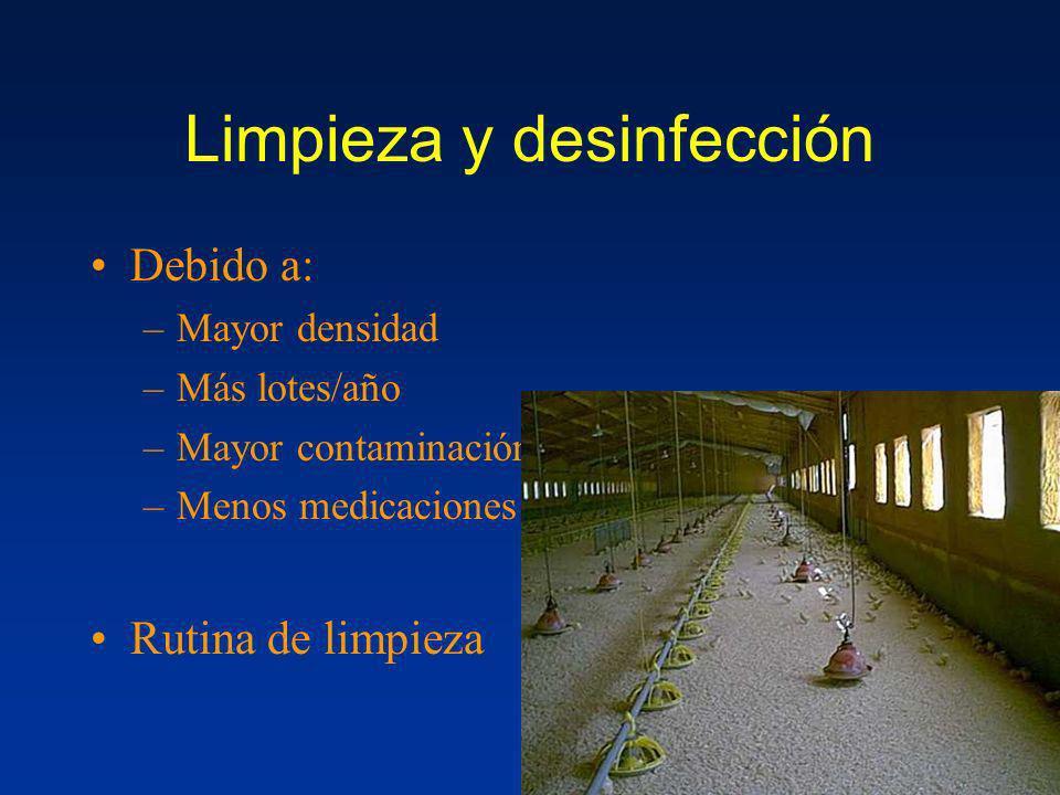 Limpieza y desinfección Debido a: –Mayor densidad –Más lotes/año –Mayor contaminación –Menos medicaciones Rutina de limpieza