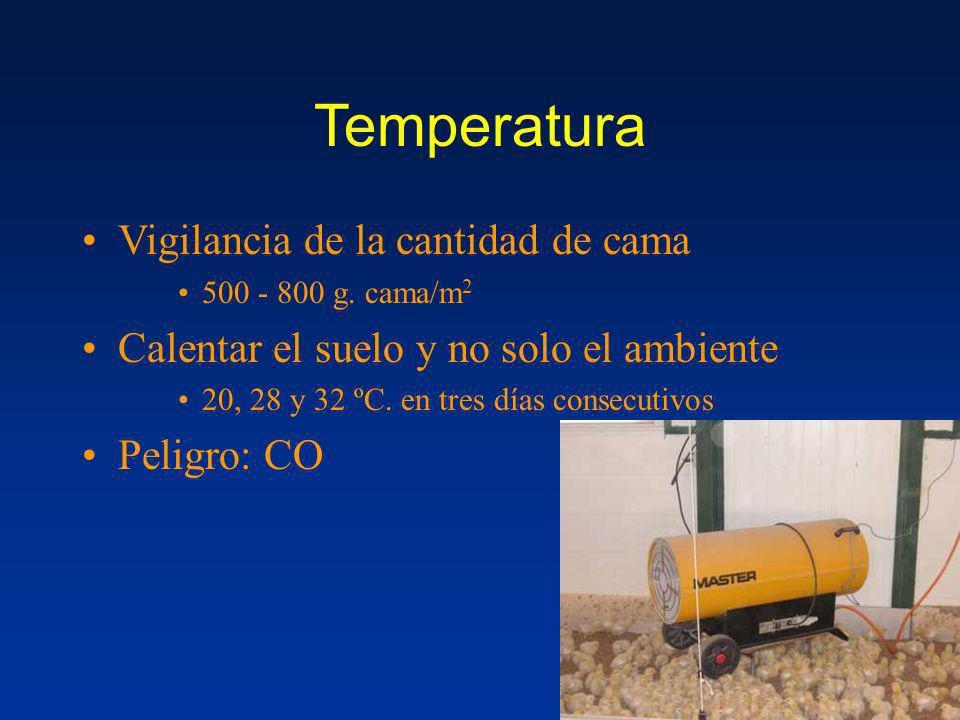Temperatura Vigilancia de la cantidad de cama 500 - 800 g. cama/m 2 Calentar el suelo y no solo el ambiente 20, 28 y 32 ºC. en tres días consecutivos