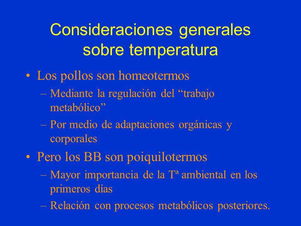 Consideraciones generales sobre temperatura Los pollos son homeotermos –Mediante la regulación del trabajo metabólico –Por medio de adaptaciones orgán