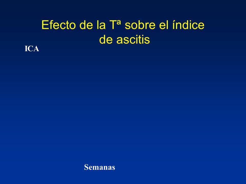 Efecto de la Tª sobre el índice de ascitis Semanas ICA