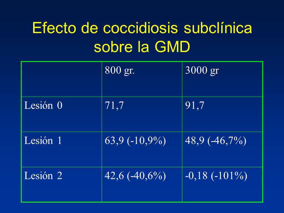 Efecto de coccidiosis subclínica sobre la GMD 800 gr.3000 gr Lesión 071,791,7 Lesión 163,9 (-10,9%)48,9 (-46,7%) Lesión 242,6 (-40,6%)-0,18 (-101%)