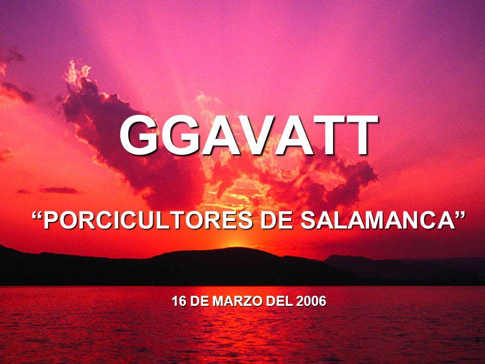 GGAVATT PORCICULTORES DE SALAMANCA 16 DE MARZO DEL 2006