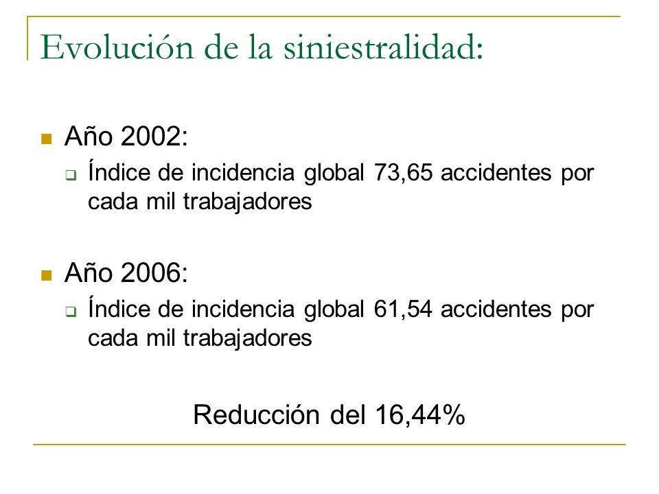 Evolución de la siniestralidad: Año 2002: Índice de incidencia global 73,65 accidentes por cada mil trabajadores Año 2006: Índice de incidencia global