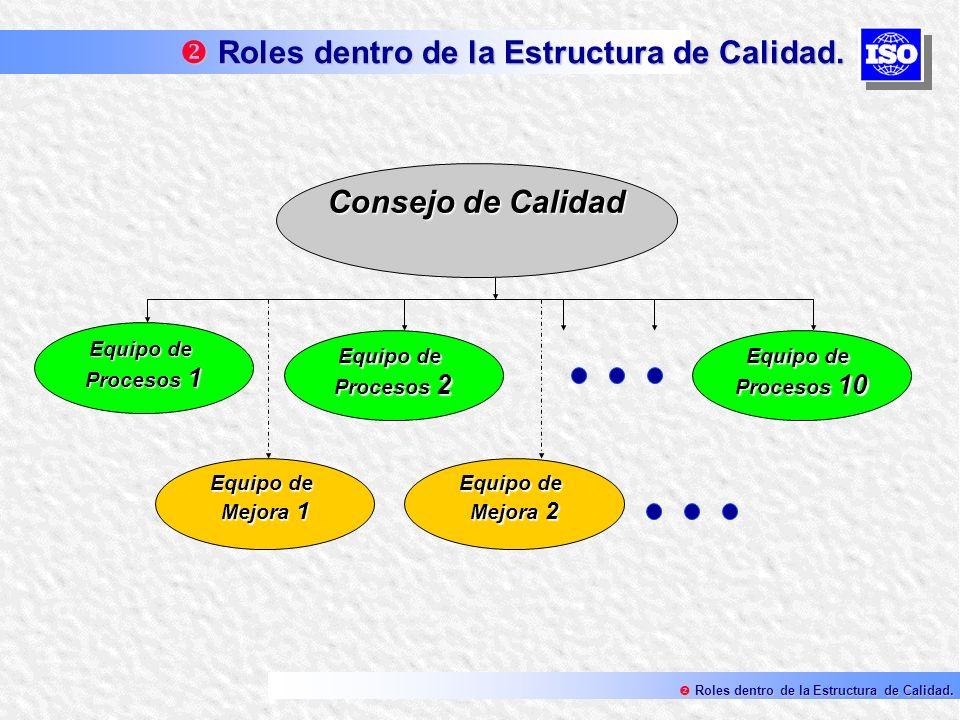 Consejo de Calidad Equipo de Procesos 1 Equipo de Procesos 2 Equipo de Procesos 10 Equipo de Mejora 2 Equipo de Mejora 1 Roles dentro de la Estructura
