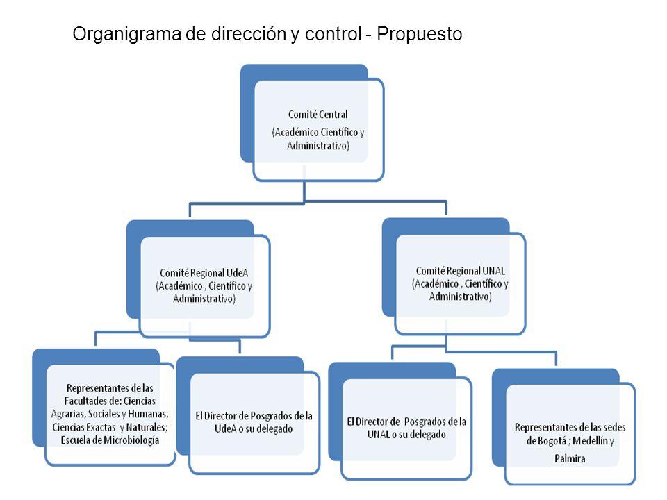 Organigrama de dirección y control - Propuesto