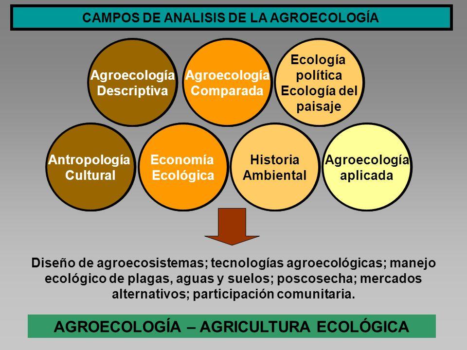 CAMPOS DE ANALISIS DE LA AGROECOLOGÍA Historia Ambiental Historia Ambiental Economía Ecológica Economía Ecológica Ecología política Ecología del paisa