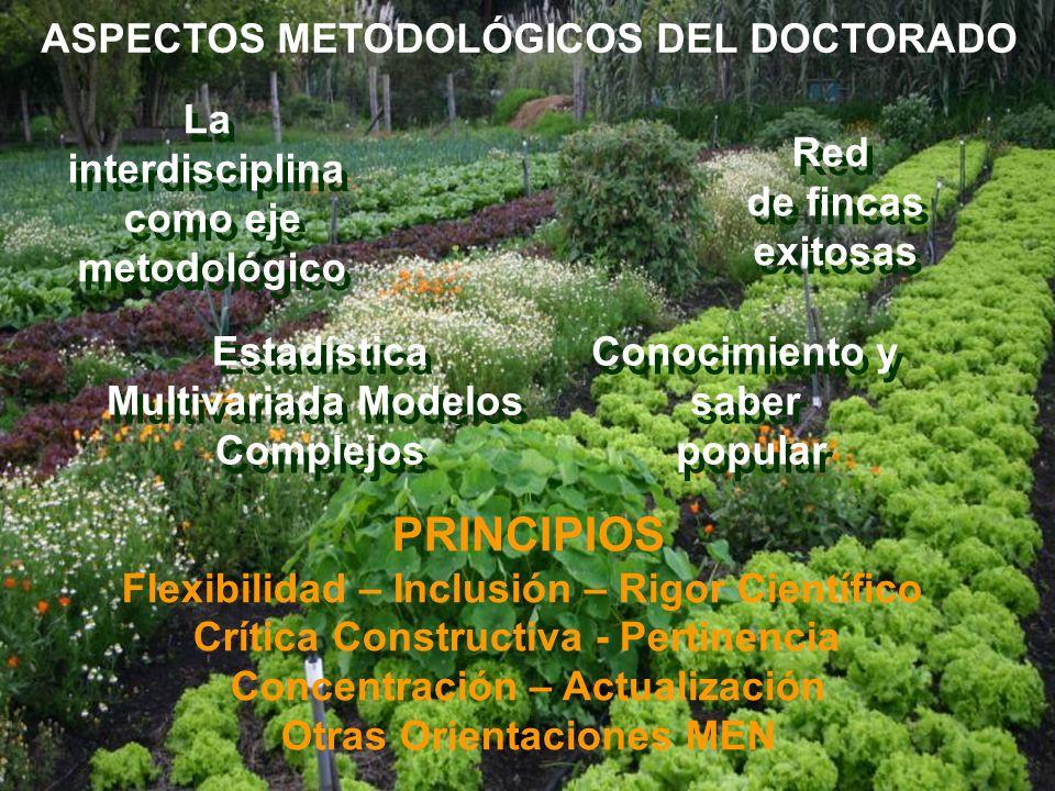 ASPECTOS METODOLÓGICOS DEL DOCTORADO La interdisciplina como eje metodológico La interdisciplina como eje metodológico Red de fincas exitosas Red de f