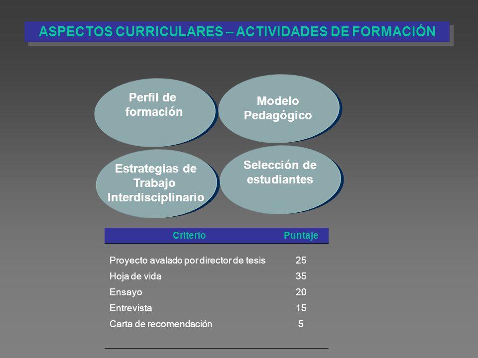 Perfil de formación Estrategias de Trabajo Interdisciplinario Modelo Pedagógico Selección de estudiantes PuntajeCriterio 5Carta de recomendación 15Ent