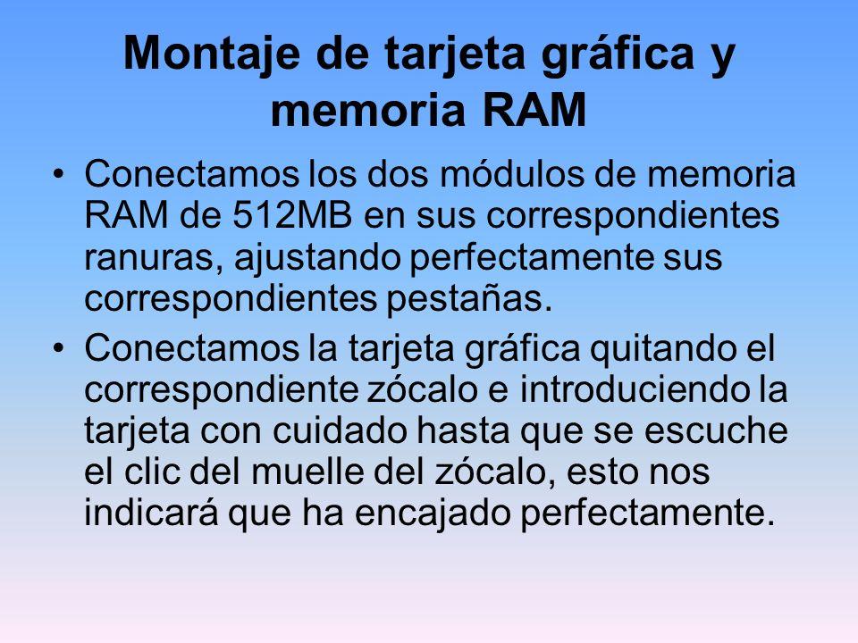 Montaje de tarjeta gráfica y memoria RAM Conectamos los dos módulos de memoria RAM de 512MB en sus correspondientes ranuras, ajustando perfectamente sus correspondientes pestañas.