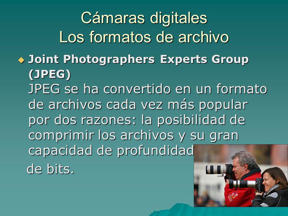 Cámaras digitales Los formatos de archivo Joint Photographers Experts Group (JPEG) JPEG se ha convertido en un formato de archivos cada vez más popula