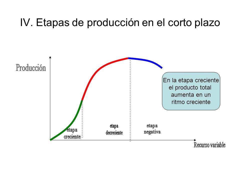 IV. Etapas de producción en el corto plazo En la etapa creciente el producto total aumenta en un ritmo creciente