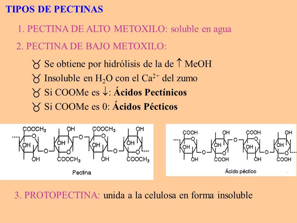 4 Durante la maduración: protopectina bajo metoxilo 4 El % pectinas totales en zumo depende: - De la presión usada en la expresión.