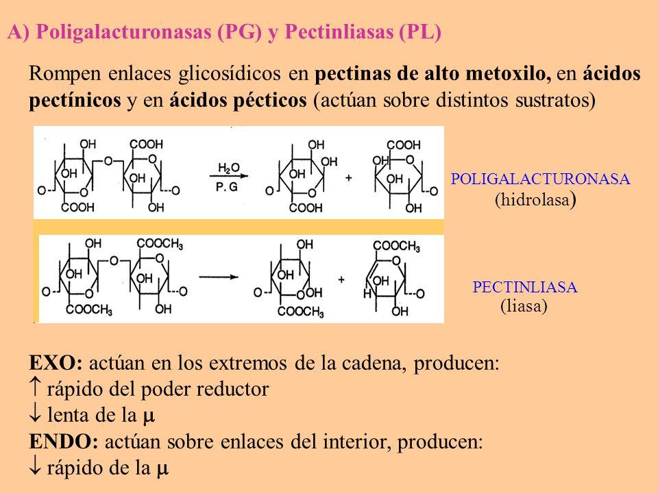 Rompe enlace ester y libera metanol, y a partir de la pectina de Metoxilo : MetoxiloAc.