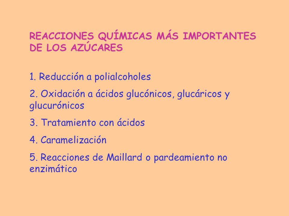 REACCIONES QUÍMICAS MÁS IMPORTANTES DE LOS AZÚCARES 1. Reducción a polialcoholes 2. Oxidación a ácidos glucónicos, glucáricos y glucurónicos 3. Tratam