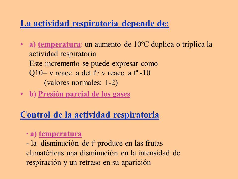 b) presión parcial de O 2 y CO 2 - reducción de Pp O 2 0.03% c) agentes químicos: - tratamiento indirecto: disminuir etileno en cámara - tratamiento directo: ciclohexiimida (inhibe la síntesis proteica que se produce durante la maduración) d) control enzimático: - cuando aumenta respiración ---> aumenta síntesis de proteínas (enzimas), con el consiguiente aumento en síntesis de RNA y velocidad de transcripción ---> se puede controlar por: d.1.