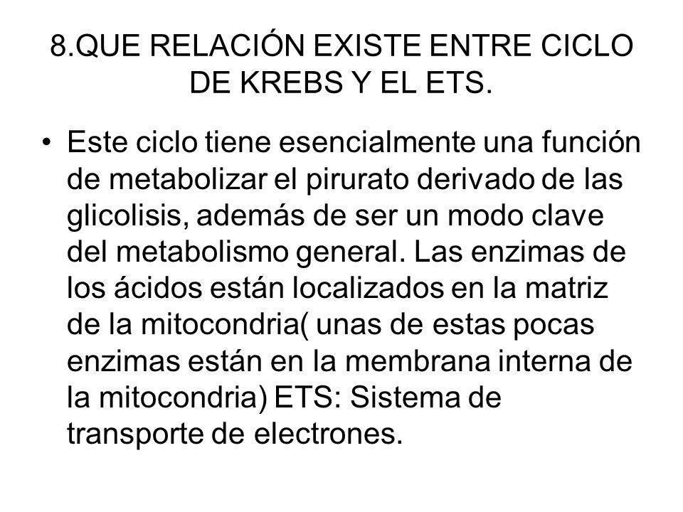 8.QUE RELACIÓN EXISTE ENTRE CICLO DE KREBS Y EL ETS. Este ciclo tiene esencialmente una función de metabolizar el pirurato derivado de las glicolisis,