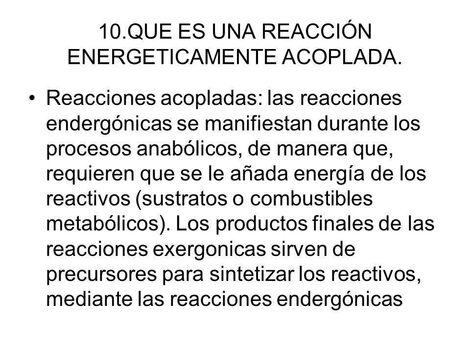 10.QUE ES UNA REACCIÓN ENERGETICAMENTE ACOPLADA. Reacciones acopladas: las reacciones endergónicas se manifiestan durante los procesos anabólicos, de
