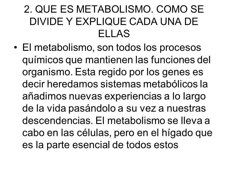 2. QUE ES METABOLISMO. COMO SE DIVIDE Y EXPLIQUE CADA UNA DE ELLAS El metabolismo, son todos los procesos químicos que mantienen las funciones del org