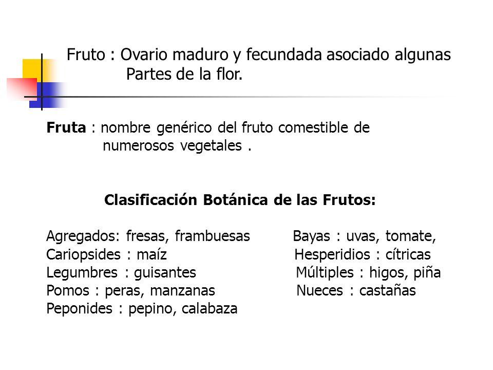 Fruto : Ovario maduro y fecundada asociado algunas Partes de la flor. Fruta : nombre genérico del fruto comestible de numerosos vegetales. Clasificaci