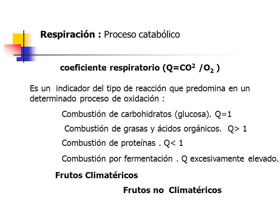 coeficiente respiratorio (Q=CO 2 /O 2 ) Es un indicador del tipo de reacción que predomina en un determinado proceso de oxidación : Combustión de carb