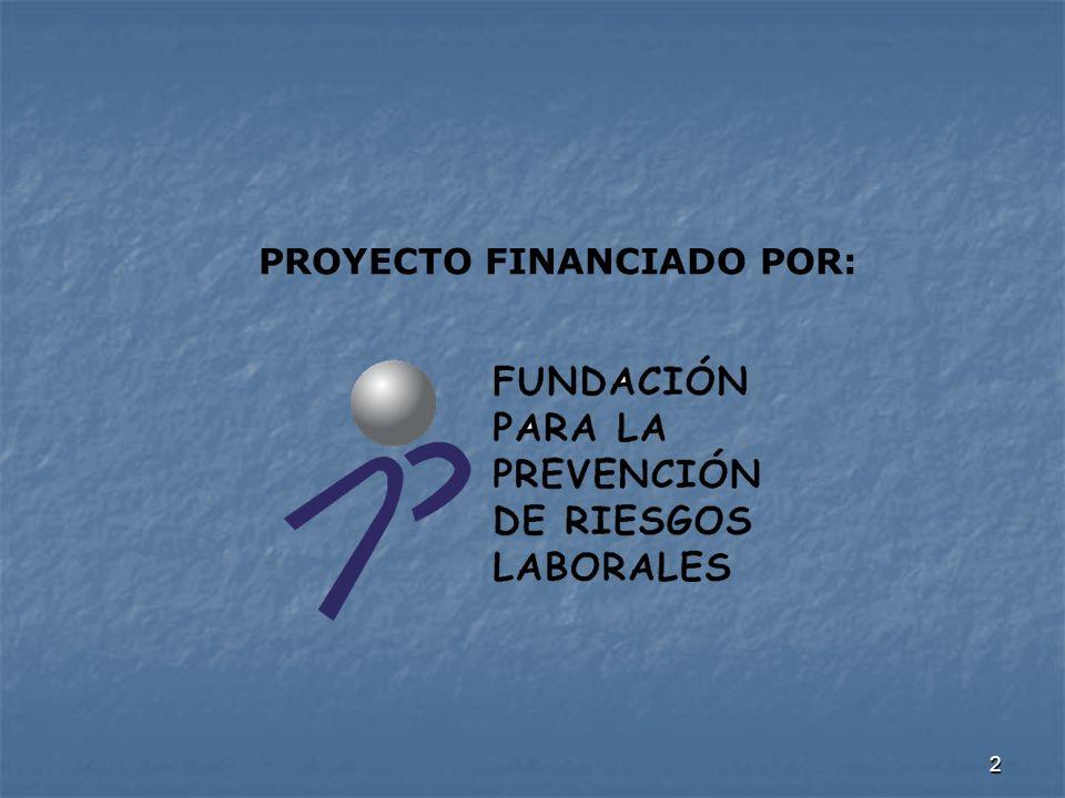 2 PROYECTO FINANCIADO POR: