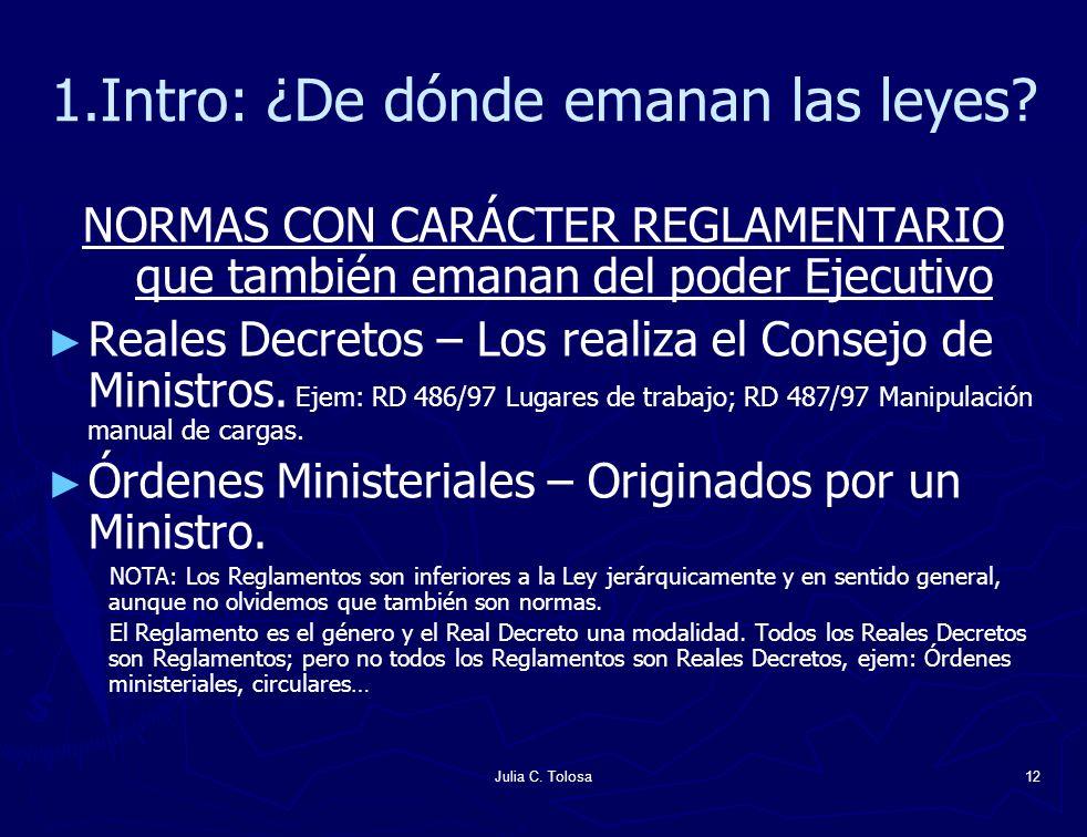 Julia C. Tolosa12 1.Intro: ¿De dónde emanan las leyes? NORMAS CON CARÁCTER REGLAMENTARIO que también emanan del poder Ejecutivo Reales Decretos – Los