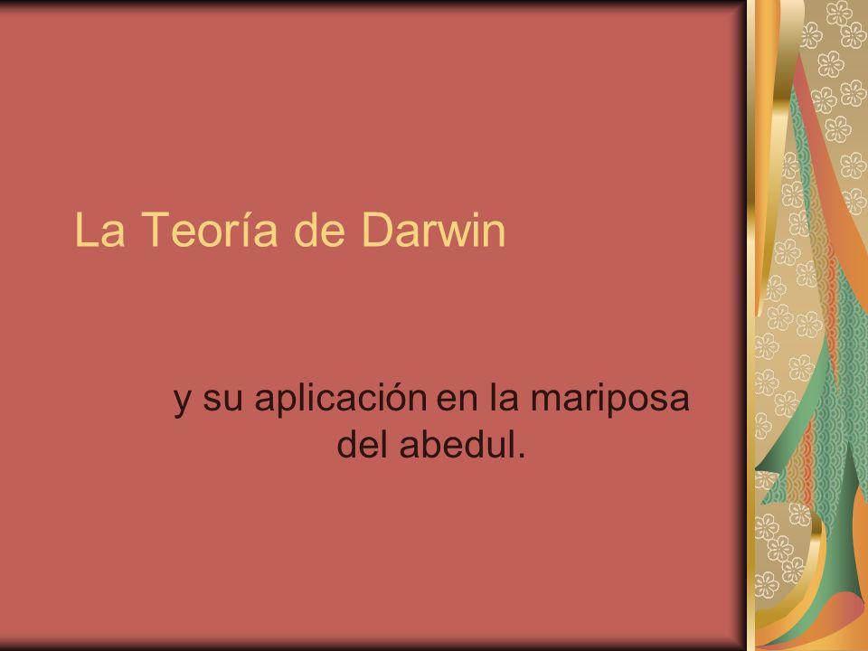 La Teoría de Darwin y su aplicación en la mariposa del abedul.