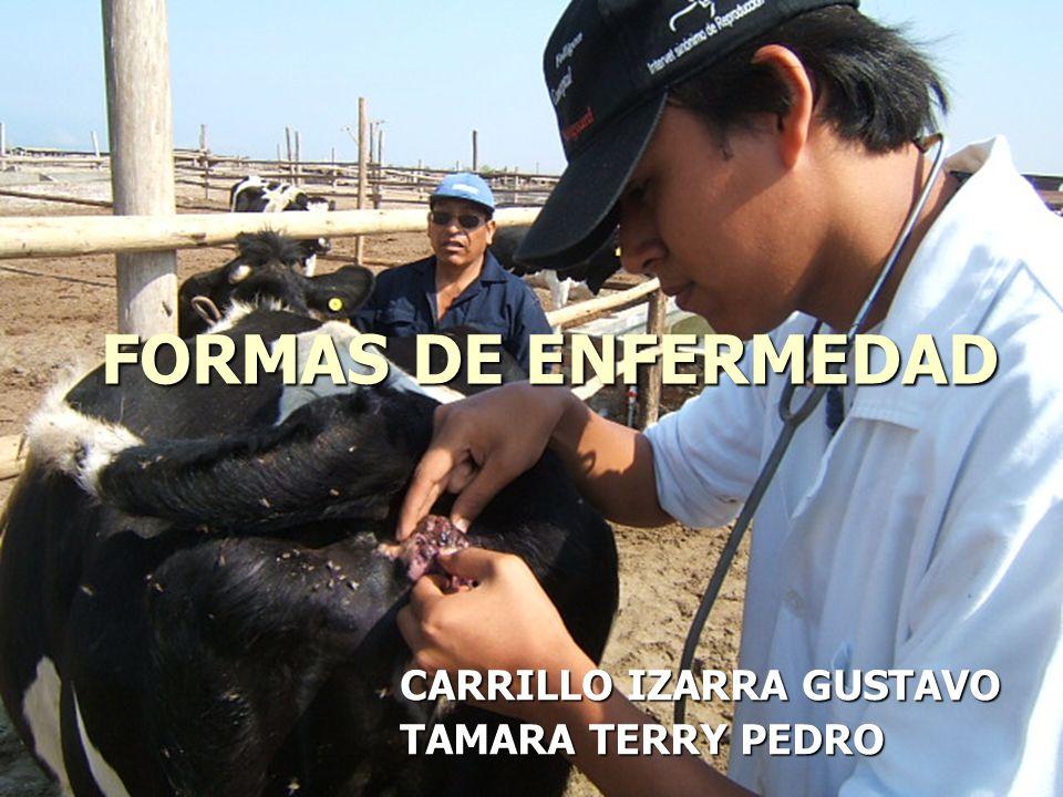 CARRILLO IZARRA GUSTAVO TAMARA TERRY PEDRO FORMAS DE ENFERMEDAD