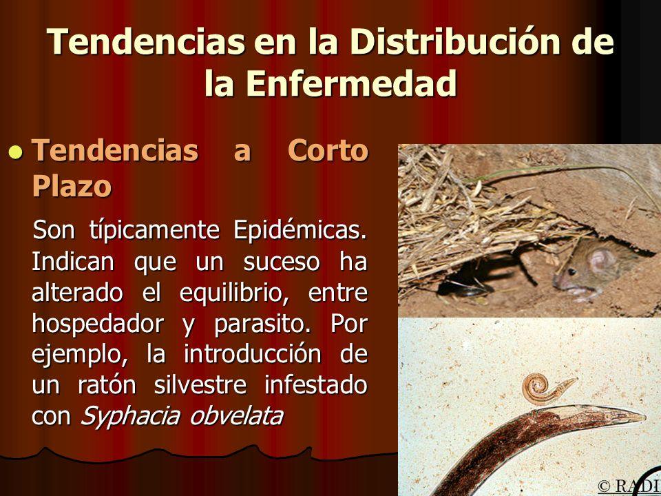 Tendencias en la Distribución de la Enfermedad Tendencias a Corto Plazo Tendencias a Corto Plazo Son típicamente Epidémicas. Indican que un suceso ha