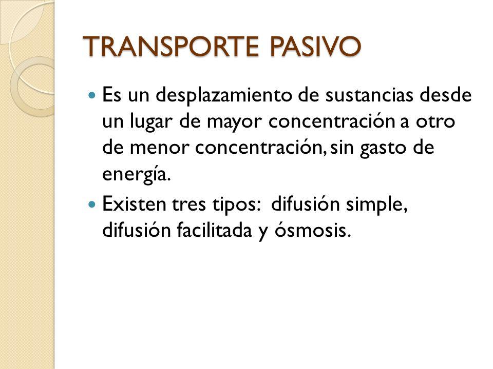 TRANSPORTE PASIVO Es un desplazamiento de sustancias desde un lugar de mayor concentración a otro de menor concentración, sin gasto de energía. Existe