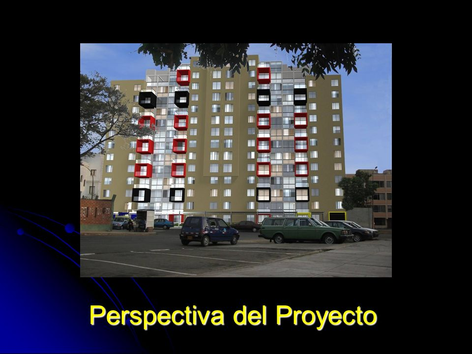 Perspectiva del Proyecto